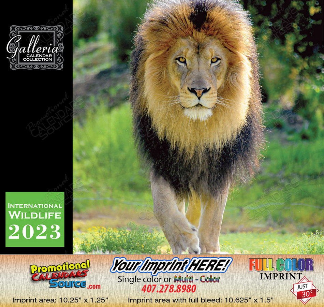 International Wildlife Calendar Stapled 2018