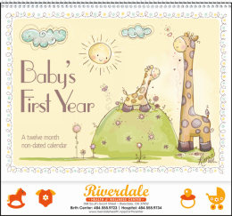 Baby s First Year by Robin Roderick Promotional Calendar 2017
