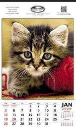Vertical Hanger Promotional Calendar 2017 - Payful Kitten