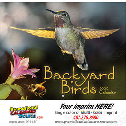 Backyard Birds Promotional Calendar 2018 Stapled