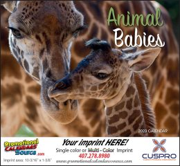 Animal Babies Wall Calendar 2018 Stapled