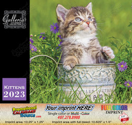 Kittens Value Calendar - 2018
