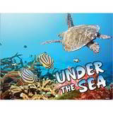 Under The Sea Life Mini Calendar