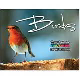 Birds Promotional Mini Calendar
