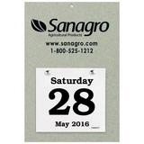 Daily Date Calendar Foil Stamped 65 8-3/8x12-3/8